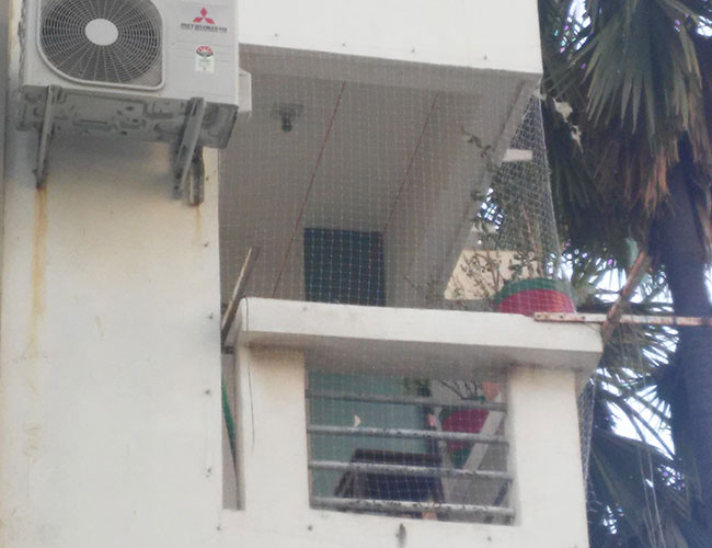 Installation of Bird Net for Pigeon Control